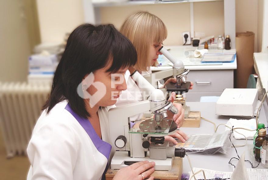 Клинико-диагностической лаборатории